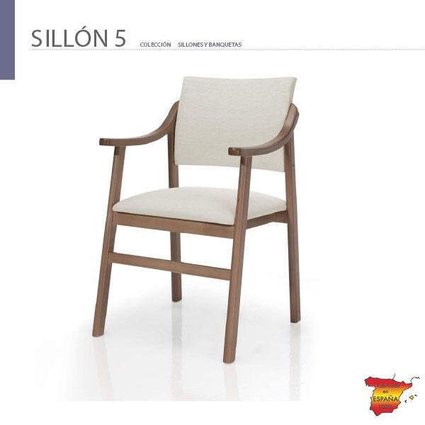 sillon-geriatrico-dm5-de-tiendadecohome-en-madrid